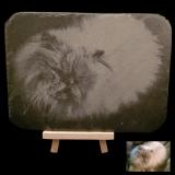Schieferplatte - Sammy - mit abgerundeten Ecken inkl. Aufsteller und individueller Gravur / Foto